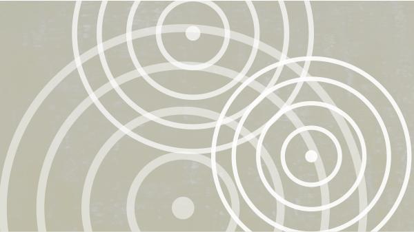 Entwicklung von Theorie und Methodik und fachlicher Austausch